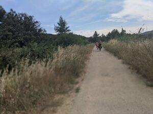 Pedaleando por la vía verde Val de Zafán